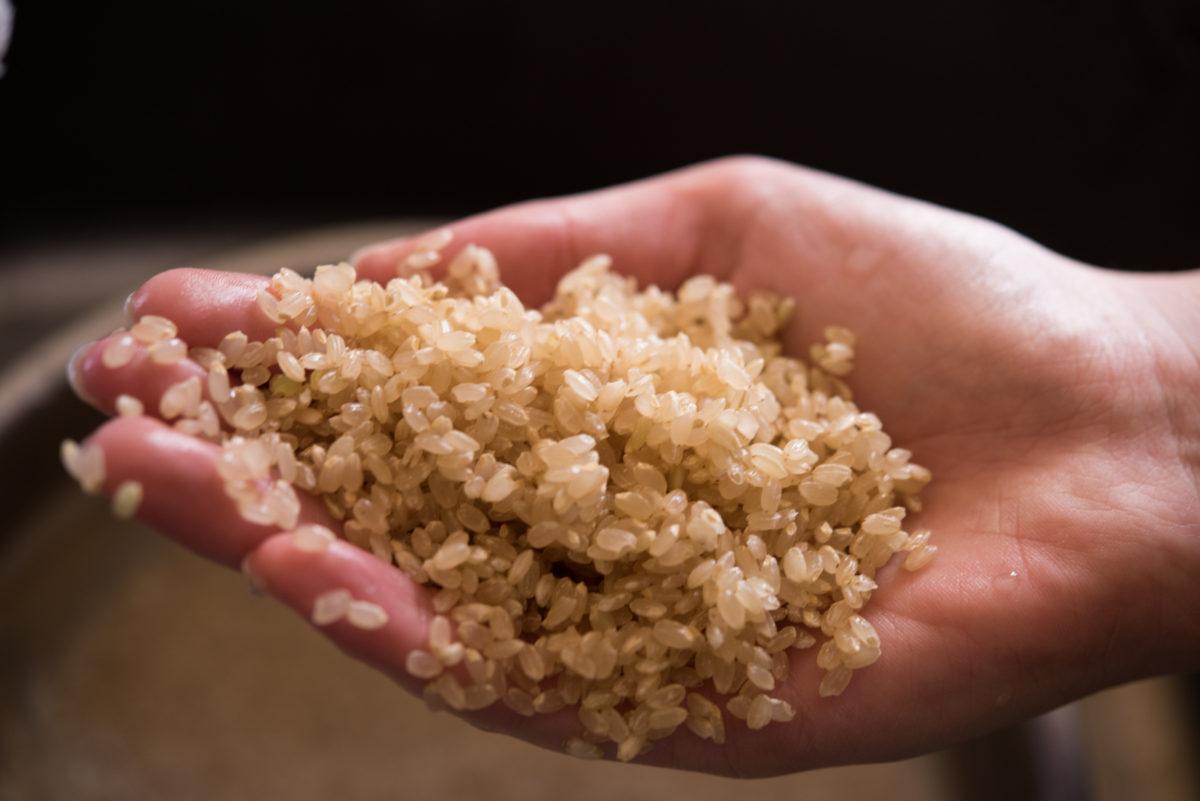 玄米の研ぎ方